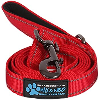 Max and Neo™ Reflective Nylon Dog Leash - We Donate a Leash to a Dog Rescue for Every Leash Sold (RED, 6 FT)