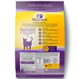 Wellness Complete Health Natural Dry Cat Food, Healthy Weight Chicken & Turkey Recipe, 12-Pound Bag