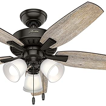 Hunter 48 In Noble Bronze Ceiling Fan With 3 Led Lights
