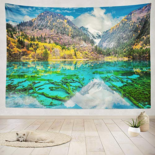 ASOCO Tapestry Wall Handing Water Flower Lake Multicolored Lake Autumn Woods Nature Valley National Park Wall Tapestry Bedroom Living Room Tablecloth Dorm 60X80 Inches
