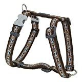 Red Dingo Bone Yard Brown Small Dog Harness