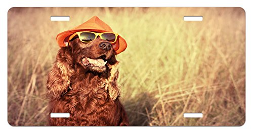 Animal License Plate by Ambesonne, Funny Retro Irish Setter Dog Wearing Hat and Sunglasses Humorous Joyful Picture, High Gloss Aluminum Novelty Plate, 5.88 L X 11.88 W Inches, Redbrown - Dogs Sunglasses Pictures With