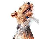 Waterpik PES-142 Pet Wand Dog Shower for Indoor-Outdoor Use, 10.5', Blue/Grey