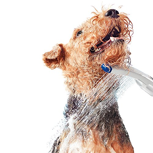 Waterpik PES-142 Pet Wand Dog Shower for Indoor-Outdoor Use, 10.5'', Blue/Grey by Waterpik