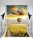 hot air balloon prop - Leyiyi Vinyl 5X7ft Photography Background Farm Manor Outdoor Flower Field And Hot Air Balloon Style Photo Backdrop Studio Props