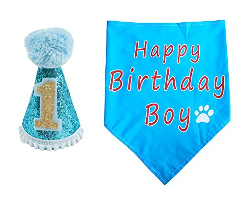PET SHOW Dogs 1st Birthday Hats And Bandanas Set Cats 1-year-old Photo Props Party Costume Grooming Accessories (Blue)