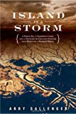 Island in a Storm, Abby Sallenger, 1586485156