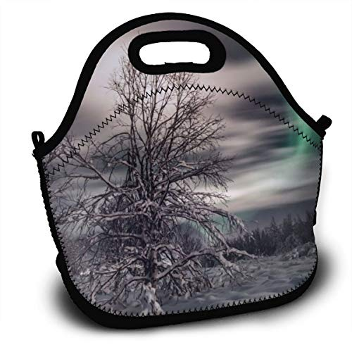 Dejup Lunch Bag Aurora Snow Trees Tote Reusable Insulated Lunchbox, Shoulder Strap with Zipper for Kids, Boys, Girls, Women and Men -