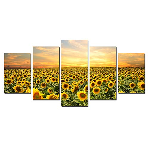 Sunflower Painting Canvas Wall Art - Sunset Landscape Pictures Wall Decor for Kitchen Living Room Artwork Modern Flowers Canvas Prints Nature Sunshine Home Office Decorations Floral 5 Panels Unframed