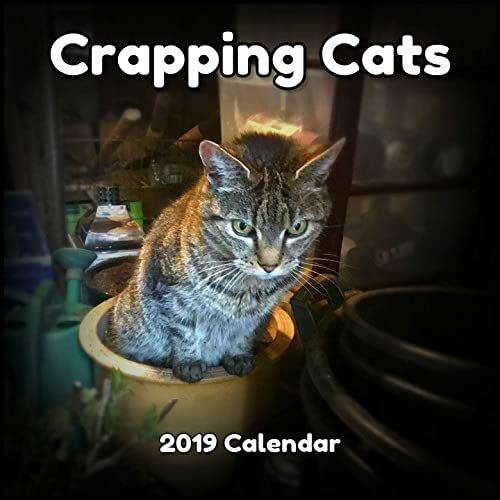 Amazon.com: CRAPPING CATS CALENDAR 2019 - WILL ARRIVE BEFORE ...