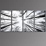 Live Art Decor - Black and White Forest Canvas Wall Art Low Angle View Aspen Trees Picture Print on Canvas,San Juan National Forest,4 Panels Framed Artwork for Modern Home Wall Decoration,Large Size