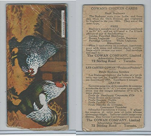 v12-cowan-chicken-cards-1924-dark-brahmas