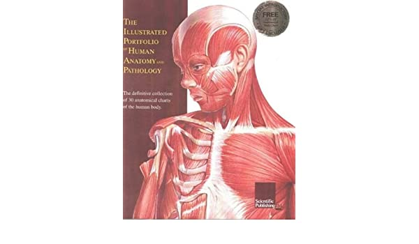 The Illustrated Portfolio Of Human Anatomy And Pathology Anatomical