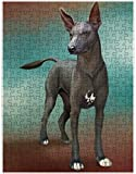 Xoloitzcuintli Mexican Haireless Dog Puzzle with Photo Tin (252 pc.)
