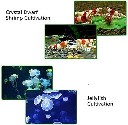 YJINGRUI Aquarium Water Chiller Fish Tank Refrigerator for Water Grass//Crystal//Shrimp//Jellyfish//Coral 110V, 20L//5Gal-cooling