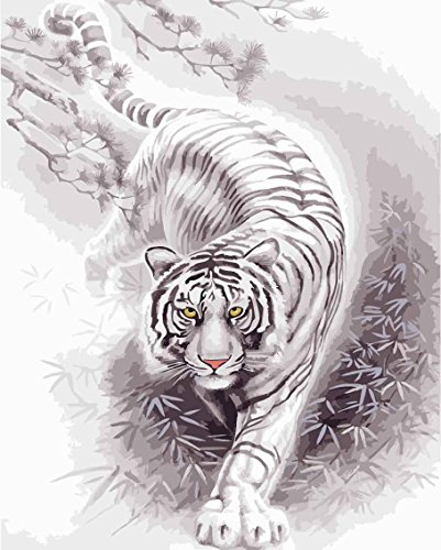 DIY PBN-paint by numbers White Tiger 16-by-20 inches Frameless.