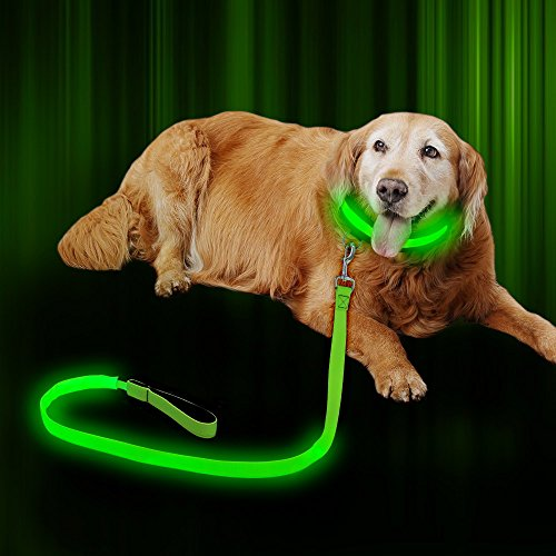 Agility Dog Collar (Illumifun LED Dog Leash USB Rechargeable 47.2inch Nylon Webbing 3 flash Modes,Safety Reflective Dog Leash LED,Glowing Dog Leash Dark Visible (Green))