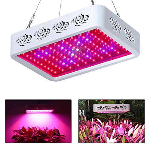 LED Grow Light, Toplanet 300W Plant Grow Lights Full Spectrum with UV/IR for Hydroponic Indoor Greenhouse Garden Plants Growing Veg and Bloom