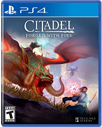 Citadel Forged with Fire - PlayStation 4 Standard Edition