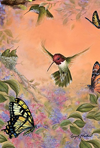 Toland Home Garden 1010228 Anna's Hummingbirds and Butterflies 28 x 40 Inch Decorative, House Flag- 28