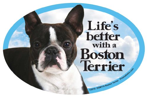 Prismatix Decal Cat and Dog Magnets, Boston Terrier Boston Terrier Pit Bull