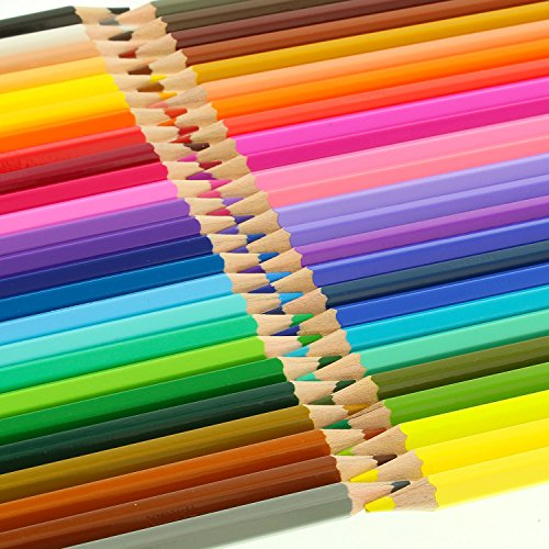 US Art Supply 50 Piece Adult Coloring Book Artist Grade Colored Pencil Set by US Art Supply (Image #3)
