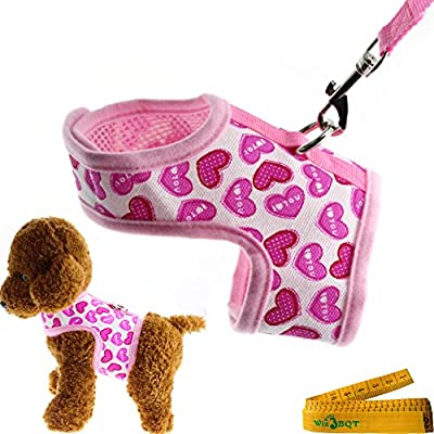 Bright Mesh Heart Printed Dog Cat Pet Vest Harness and Matching Leash Set in Pink for SMALL Dogs Cats