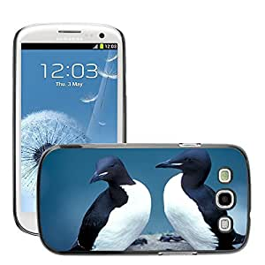 Hot Style Cell Phone PC Hard Case Cover // M00112980 Thick Billed Murres Birds Seabird // Samsung Galaxy S3 S III SIII i9300