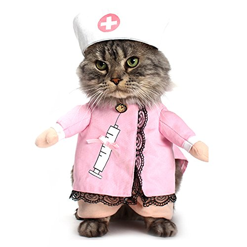 Alfie Pet by Petoga Couture - Kade the Nurse for Party Halloween Special Events Costume - Size: Small