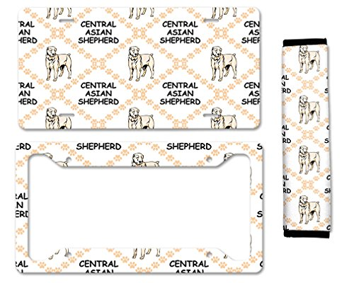 license plate frame asian - 7