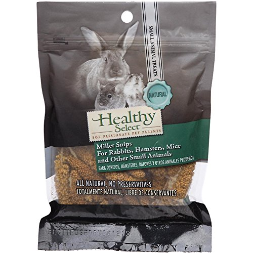 Healthy-Select-Millet-Snips-for-Small-Animals-2-oz