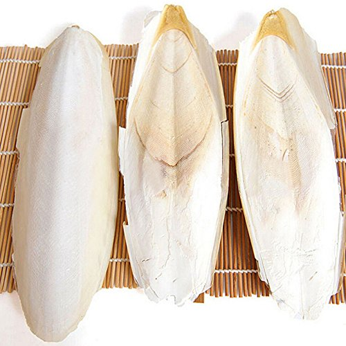 Cuttlefish Bone,1 Bag Health Cuttlefish Bone Reptiles Tortoise Mini Animals Birds Pet Food Supplies,3~5Pcs/Bag(As the pictures shown)