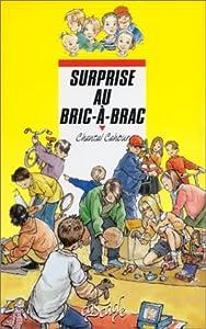 """Afficher """"Surprise au bric-à-brac"""""""