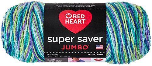 - RED HEART  Super Saver Jumbo Yarn, Wildflower