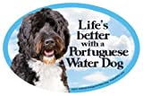 Portuguese Water Dog Oval Dog Magnet for Cars