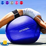 Exercise Balls Review and Comparison