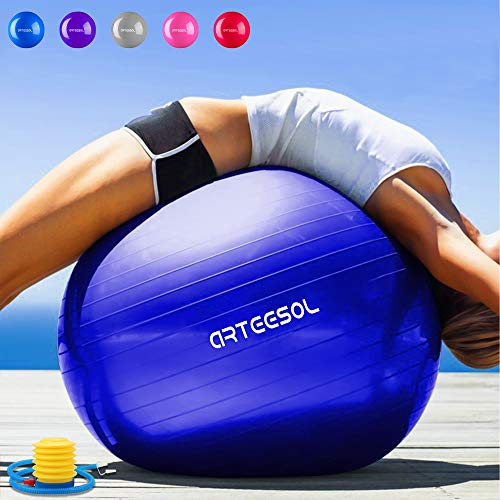 55cm Exercise Gym Yoga Swiss Core Ball Fitness Pregnancy Birthing Anti Burst