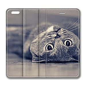 Brian114 5C Case, iPhone 5C Case - Best Protective Scratch-Proof Leather Cases for iPhone 5C Grey Cat Laying Down On His Back Customized Design Folio Flip Leather Case Cover for iPhone 5C Inch