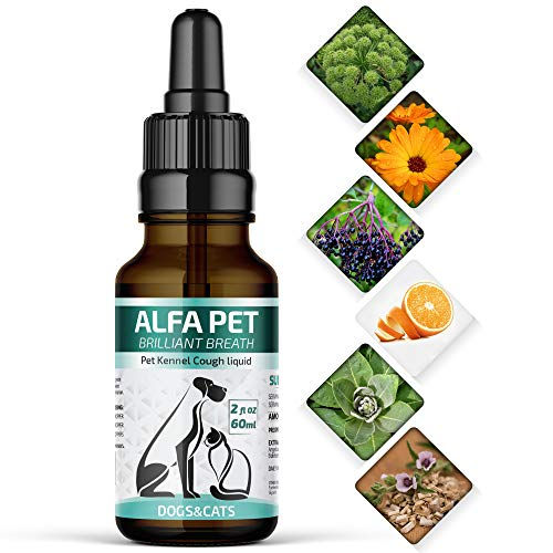 (Alfa Pet Kennel Cough Medicine for Dogs - Organic Dog Cough Medicine for Colds & Allergies - Natural Kennel Cough Treatment with Mullein Leaf & Elderberry (White))