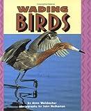 Wading Birds, Anne Welsbacher, 0822536145