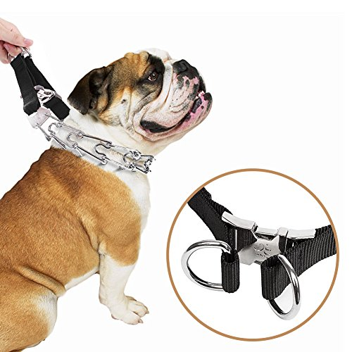 Pit Bull German Shepherd Prong Training Collar, Stainless Steel with Silver Plating, Quick Release Snap Buckle and Adjustable Ultra Dog Pinch Collar for Medium Large Dogs