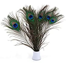"Real Natural Peacock Feathers 10-12"" (25~30cm) Great Wedding Christmas Halloween Decorations House Decoration (Pack of 10)"