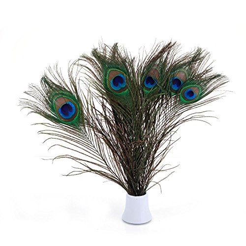 Bseash Real Natural Peacock Feathers 10-12
