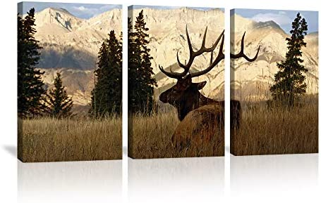 KALAWA Nature Calligraphy Animal Scenery Canvas Print Painting Deer
