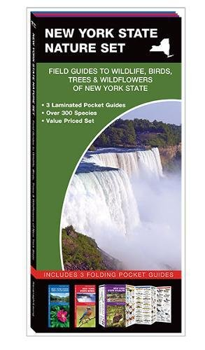 New York State Nature Set: Field Guides to Wildlife, Birds, Trees & Wildflowers of New York State - New York State Bird