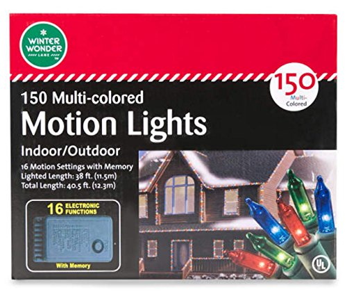 Led 16 Function Motion Christmas Lights - 1
