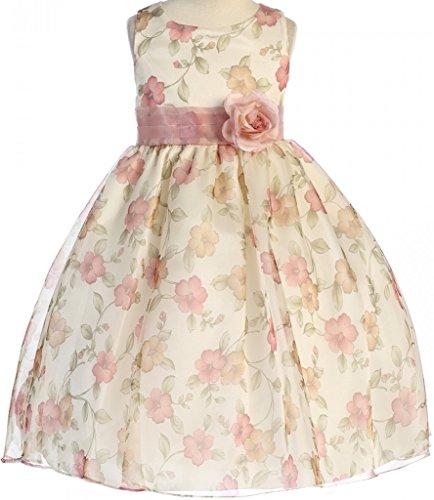 Big Girls' Gorgeous Sleeveless Dress Organza Floral Prints Easter Summer Flower Girl Dress Rose 8 (K19D9)