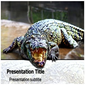 amazon com crocodile powerpoint template crocodile powerpoint
