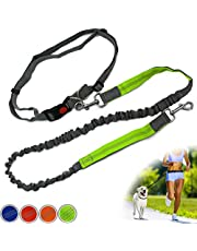 Zenify Hands Free Dog Lead for Running, Walking, Hiking, Canicross Dual Handle Comfortable Waist Belt Leash Band Reflective Stitching Adjustable Bungee Length Extendable 125cm - 190cm (Grey/Green)