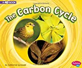 #10: The Carbon Cycle: A 4D Book (Cycles of Nature)